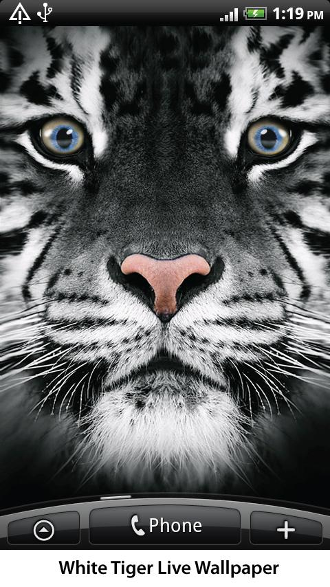 White Tiger Live Wallpaper Android Personalization