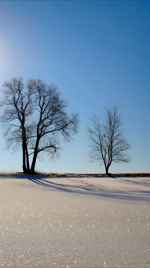 Winter Landscapes Android Personalization