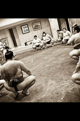 Sumo illustrated Android Sports