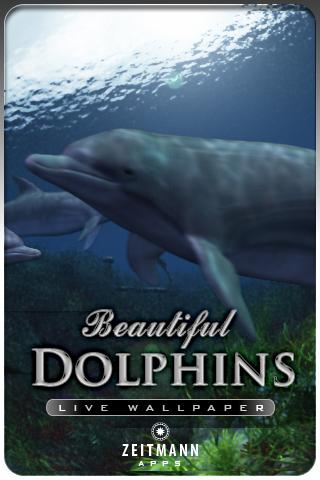 DOLPHINS  live wallpaper . Android Themes