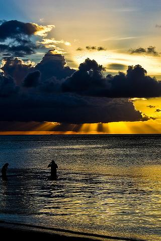 Discover Mauritius Android Travel & Local