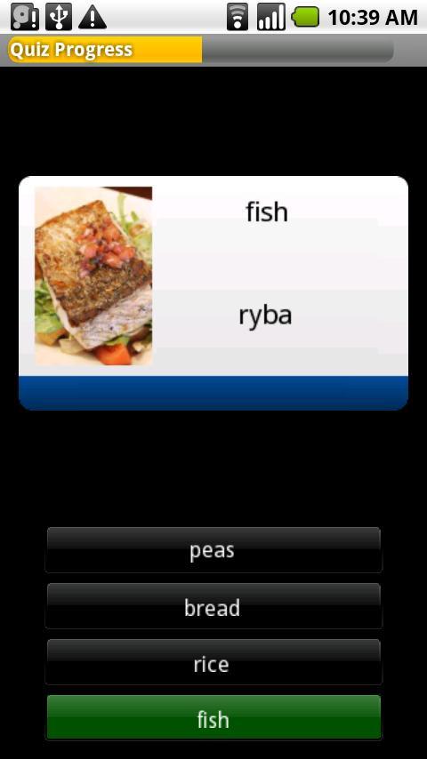 Byki Czech Android Education