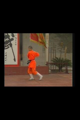 Kung Fu Shaolin Yin-Hand Staff Android Entertainment