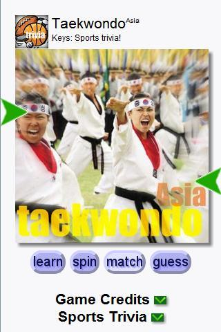 Taekwondo Tour (Keys) Android Arcade & Action