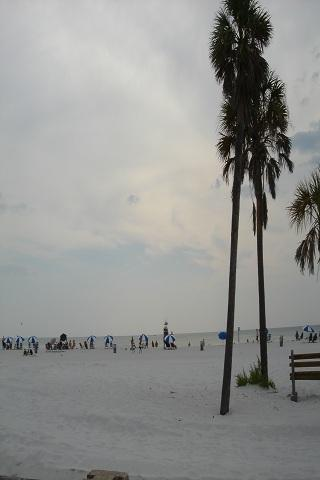 Clearwater Beach Wallpapers HQ Android Themes