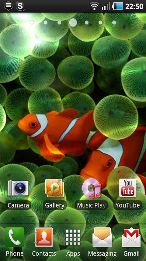 Apple Clownfish Live Wallpaper Android Themes