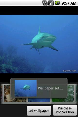 Under the Sea Free Android Personalization
