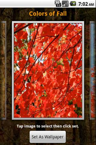 Colors Of Fall Wallpaper Android Themes