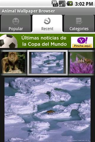 Animal Wallpaper Browser Android Personalization