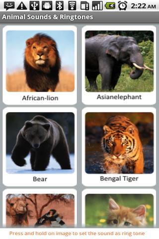 Animal Sounds & Ringtones Android Entertainment