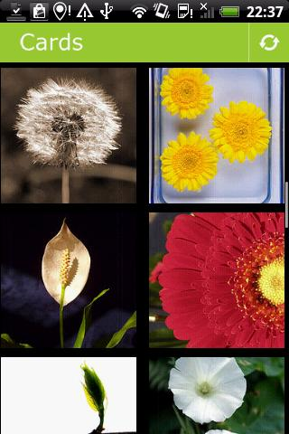 Flowers postcards Android Entertainment