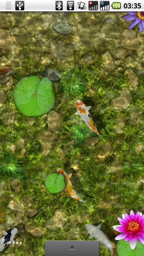 2010 virtual koi pond android themes best android apps for Koi pond app