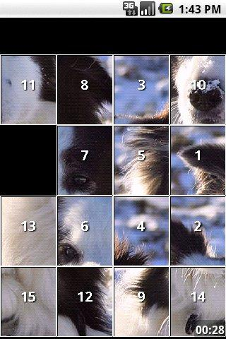 Border Collie Dog Puzzles Android Brain & Puzzle