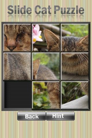 Slide Cat Puzzle Android Brain & Puzzle