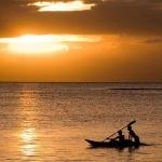 Discover Mauritius