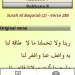40 Rabbanas from Quran