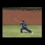 Juvenile Wushu: Cudgel Play