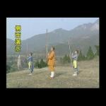 Shaolin Kung Fu: Fire Cudgel