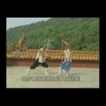Shaolin Kung Fu Crutch V Spear