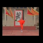 Kung Fu: Shaolin Double Whips