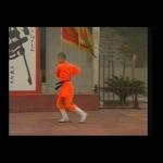 Kung Fu Shaolin Yin-Hand Staff