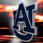 Auburn Tigers LWP