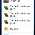 Turtle Photoframe
